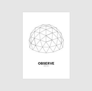 observe-single